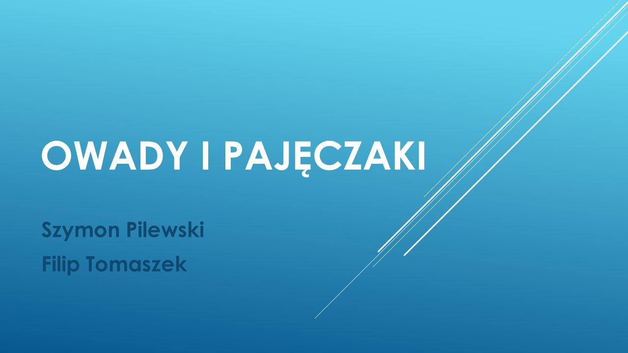 OWADY I PAJĘCZAKI Szymon Pilewski Filip Tomaszek