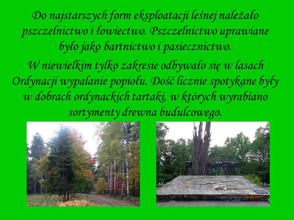 Do najstarszych form eksploatacji leśnej należało pszczelnictwo i łowiectwo. Pszczelnictwo uprawiane było jako bartnictwo i pasiecznictwo. W niewielki