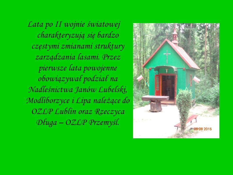 Lata po II wojnie światowej charakteryzują się bardzo częstymi zmianami struktury zarządzania lasami. Przez pierwsze lata powojenne obowiązywał podzia