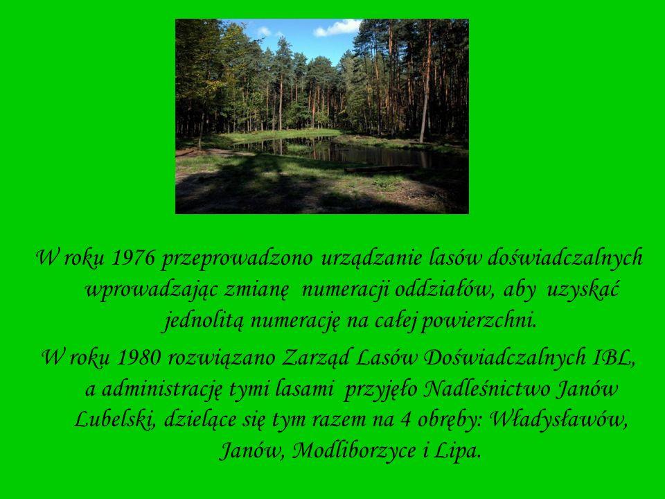 W roku 1976 przeprowadzono urządzanie lasów doświadczalnych wprowadzając zmianę numeracji oddziałów, aby uzyskać jednolitą numerację na całej powierzc