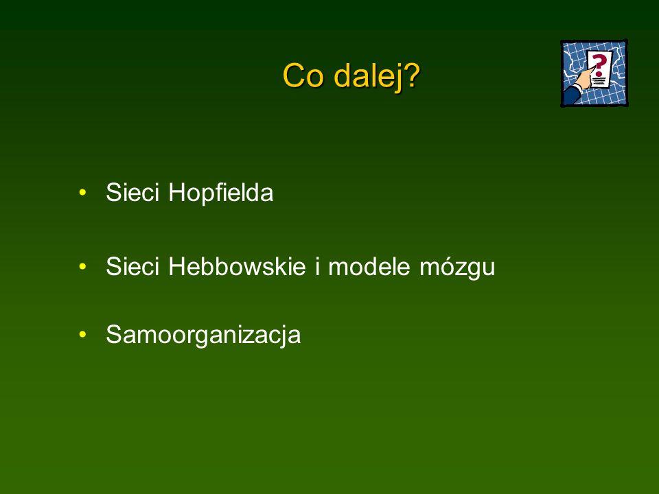 Co dalej Sieci Hopfielda Sieci Hebbowskie i modele mózgu Samoorganizacja