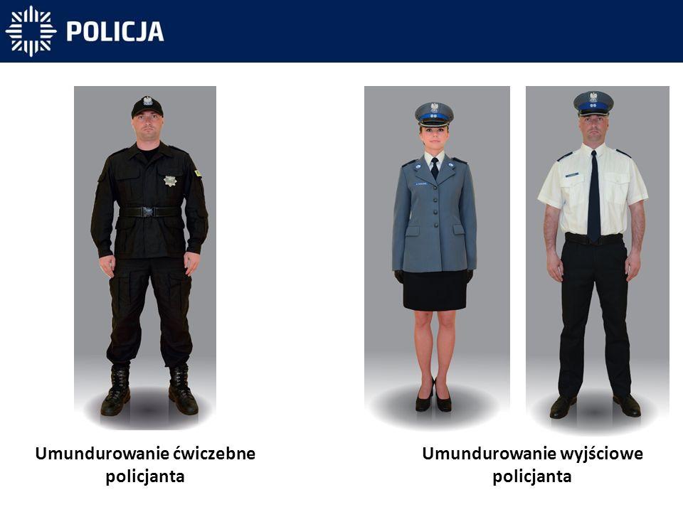 Policjanci będą pełnili służbę również w ubiorze cywilnym.