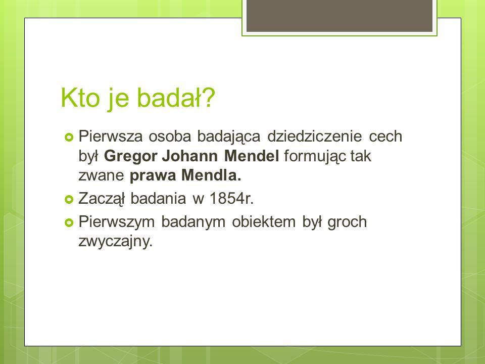 Kto je badał?  Pierwsza osoba badająca dziedziczenie cech był Gregor Johann Mendel formując tak zwane prawa Mendla.  Zaczął badania w 1854r.  Pierw