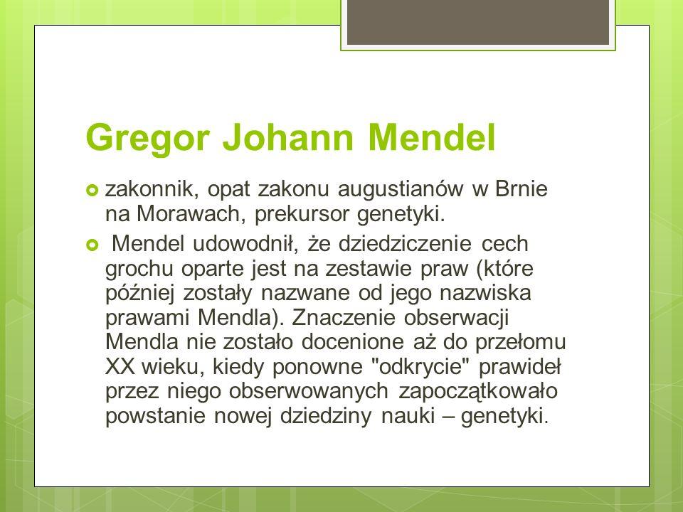 Gregor Johann Mendel  zakonnik, opat zakonu augustianów w Brnie na Morawach, prekursor genetyki.  Mendel udowodnił, że dziedziczenie cech grochu opa