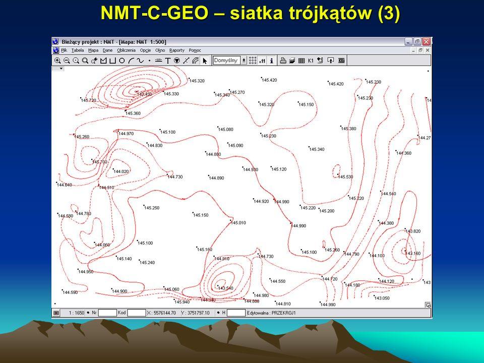 NMT-C-GEO – siatka trójkątów (3)
