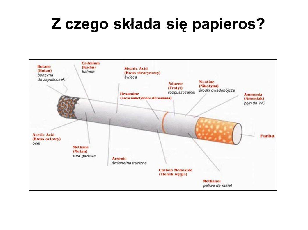 Z czego składa się papieros?