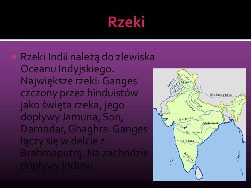  Rzeki Indii należą do zlewiska Oceanu Indyjskiego. Największe rzeki: Ganges czczony przez hinduistów jako święta rzeka, jego dopływy Jamuna, Son, Da