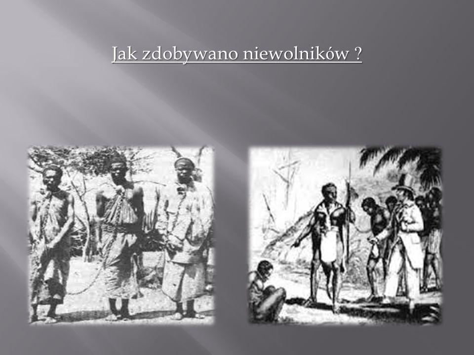Jak zdobywano niewolników ?