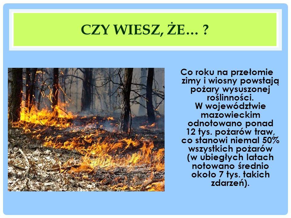 CZY WIESZ, ŻE… ? Co roku na przełomie zimy i wiosny powstają pożary wysuszonej roślinności. W województwie mazowieckim odnotowano ponad 12 tys. pożaró