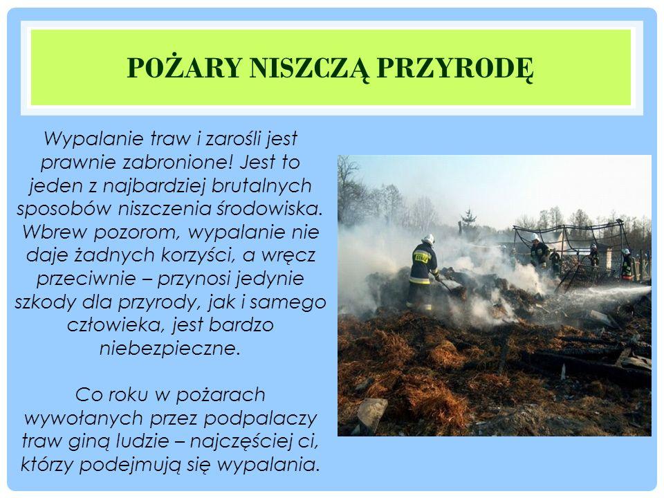 PO Ż ARY NISZCZ Ą PRZYROD Ę Wypalanie traw i zarośli jest prawnie zabronione.
