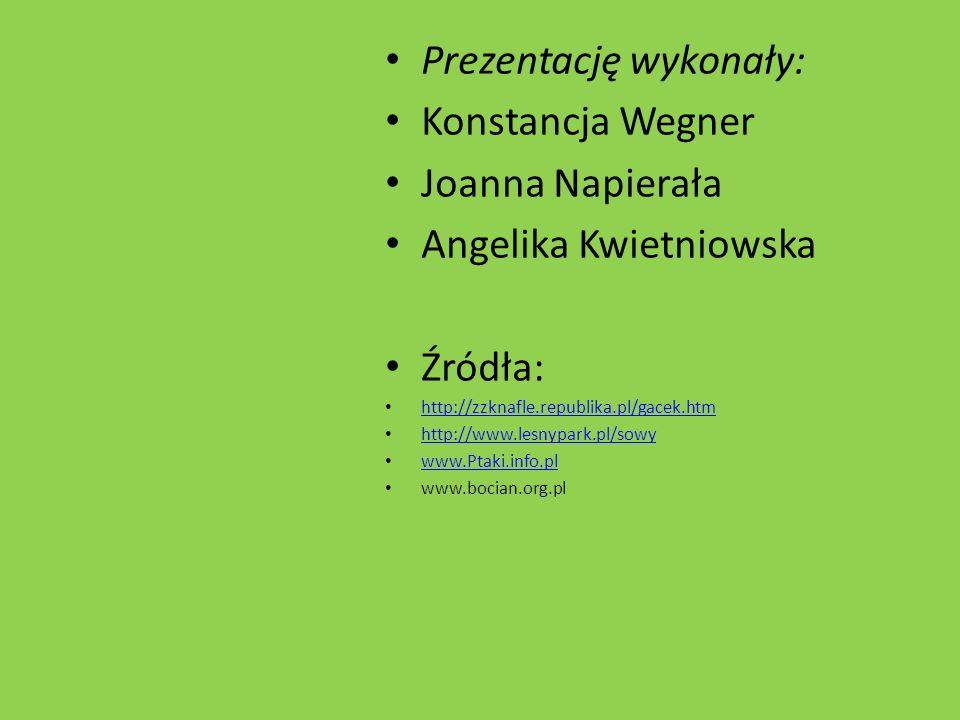 Prezentację wykonały: Konstancja Wegner Joanna Napierała Angelika Kwietniowska Źródła: http://zzknafle.republika.pl/gacek.htm http://www.lesnypark.pl/sowy www.Ptaki.info.pl www.bocian.org.pl