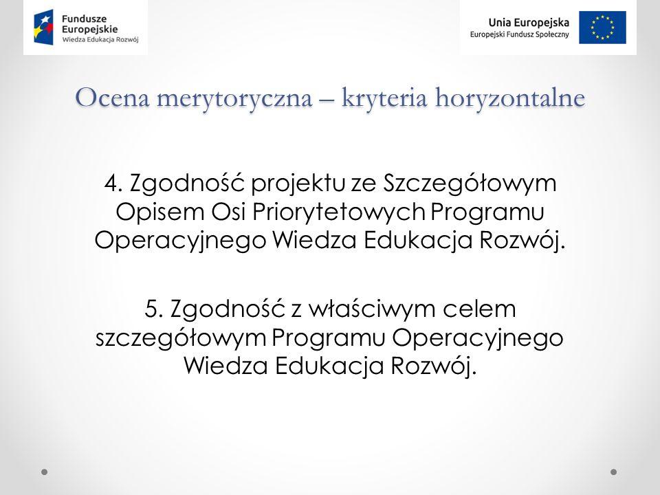 Ocena merytoryczna – kryteria horyzontalne 4.