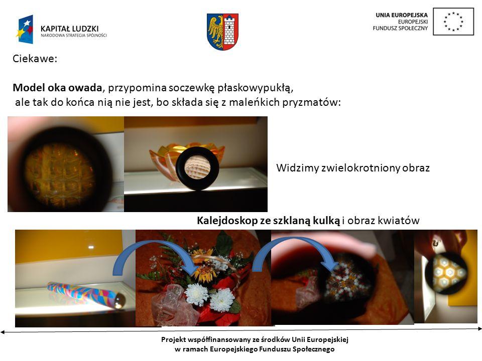 Projekt współfinansowany ze środków Unii Europejskiej w ramach Europejskiego Funduszu Społecznego Ciekawe: Model oka owada, przypomina soczewkę płaskowypukłą, ale tak do końca nią nie jest, bo składa się z maleńkich pryzmatów: Widzimy zwielokrotniony obraz Kalejdoskop ze szklaną kulką i obraz kwiatów
