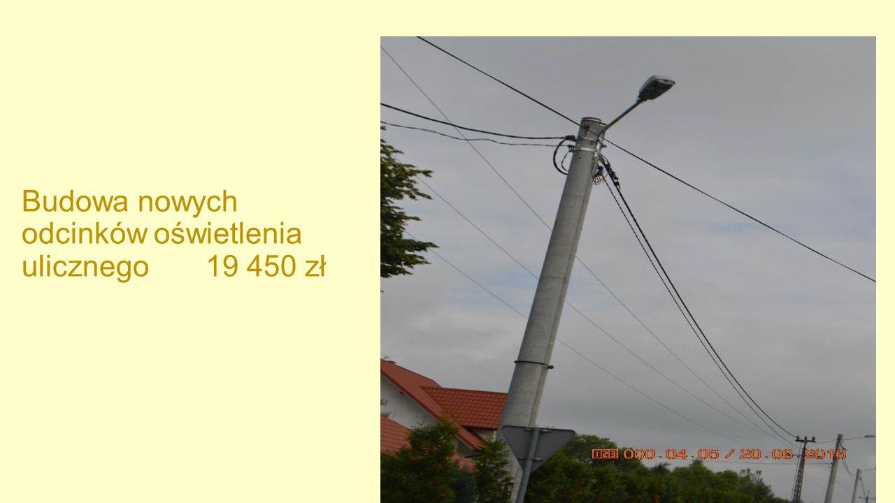 Budowa nowych odcinków oświetlenia ulicznego 19 450 zł
