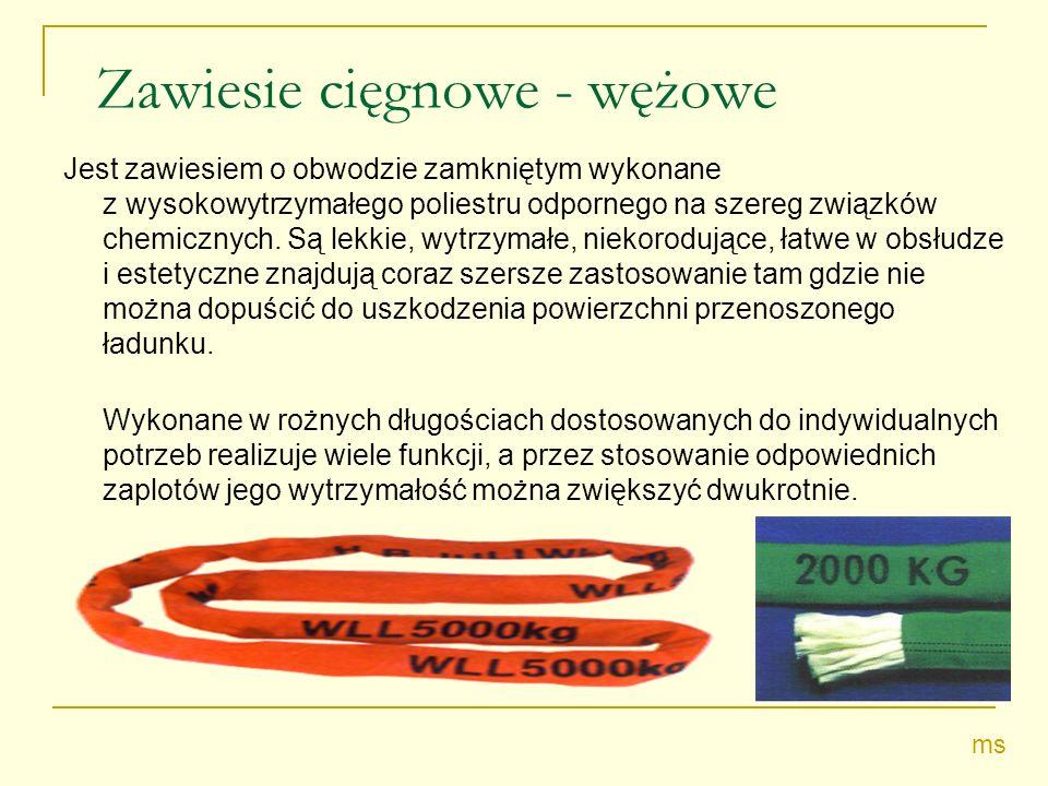 Zawiesie cięgnowe - wężowe Jest zawiesiem o obwodzie zamkniętym wykonane z wysokowytrzymałego poliestru odpornego na szereg związków chemicznych. Są l