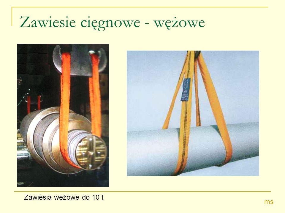 Zawiesie cięgnowe - wężowe Zawiesia wężowe do 10 t ms