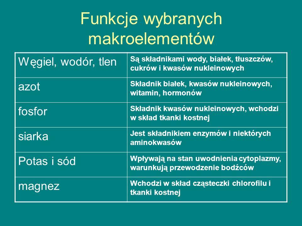 Funkcje wybranych makroelementów Węgiel, wodór, tlen Są składnikami wody, białek, tłuszczów, cukrów i kwasów nukleinowych azot Składnik białek, kwasów nukleinowych, witamin, hormonów fosfor Składnik kwasów nukleinowych, wchodzi w skład tkanki kostnej siarka Jest składnikiem enzymów i niektórych aminokwasów Potas i sód Wpływają na stan uwodnienia cytoplazmy, warunkują przewodzenie bodźców magnez Wchodzi w skład cząsteczki chlorofilu i tkanki kostnej