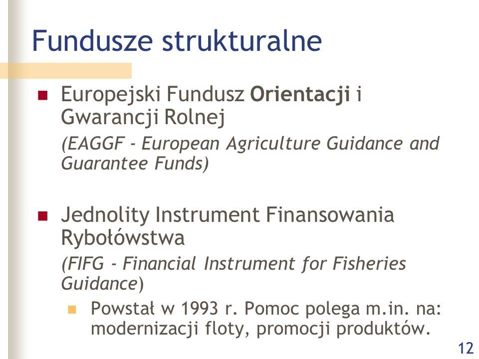 12 Fundusze strukturalne Europejski Fundusz Orientacji i Gwarancji Rolnej (EAGGF - European Agriculture Guidance and Guarantee Funds) Jednolity Instrument Finansowania Rybołówstwa (FIFG - Financial Instrument for Fisheries Guidance) Powstał w 1993 r.