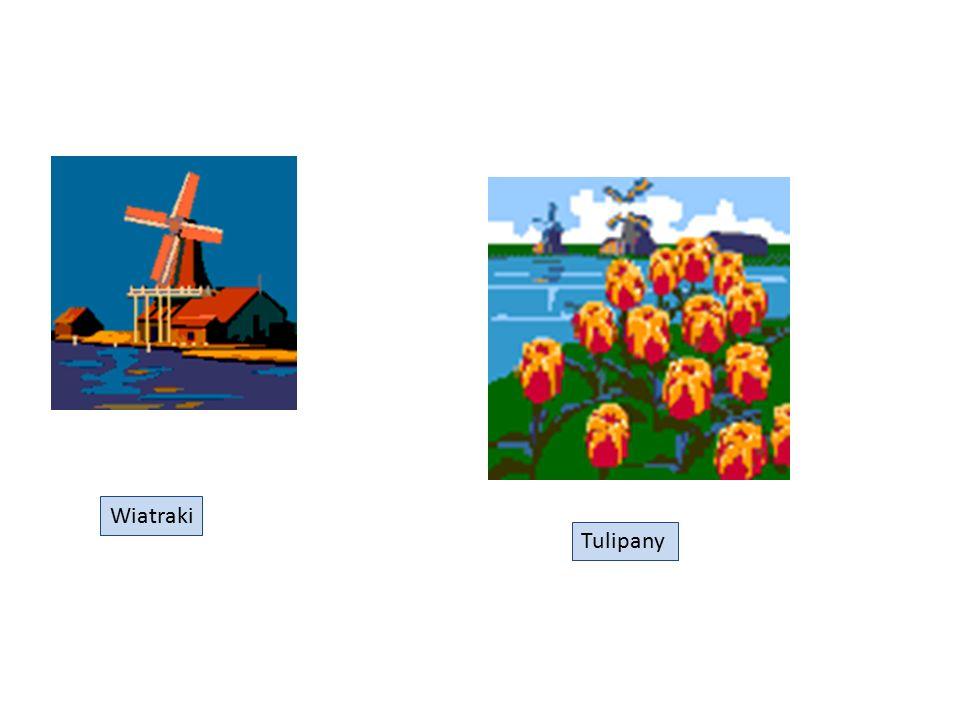 Wiatraki Tulipany