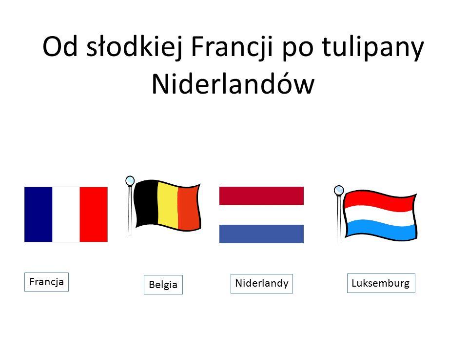 Od słodkiej Francji po tulipany Niderlandów Francja Belgia Niderlandy Luksemburg