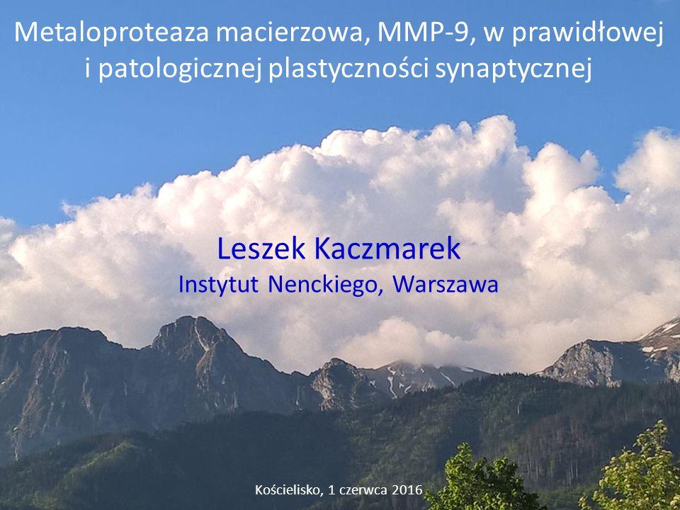 Leszek Kaczmarek Instytut Nenckiego, Warszawa Kościelisko, 1 czerwca 2016 Metaloproteaza macierzowa, MMP-9, w prawidłowej i patologicznej plastyczności synaptycznej