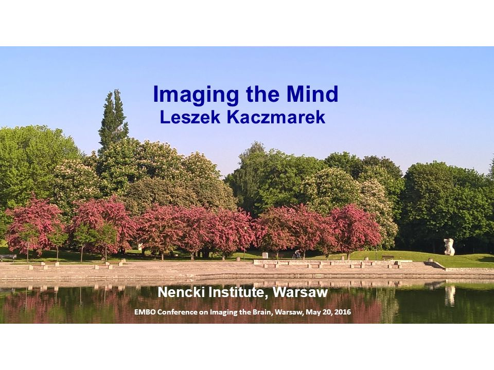 Imaging the Mind EMBO Conference on Imaging the Brain, Warsaw, May 20, 2016 Leszek Kaczmarek Nencki Institute, Warsaw