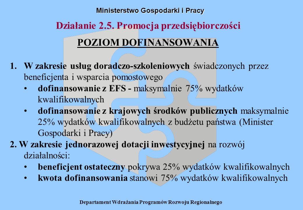 Departament Wdrażania Programów Rozwoju Regionalnego Działanie 2.5. Promocja przedsiębiorczości POZIOM DOFINANSOWANIA Ministerstwo Gospodarki i Pracy
