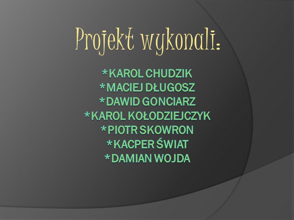 Projekt wykonali: