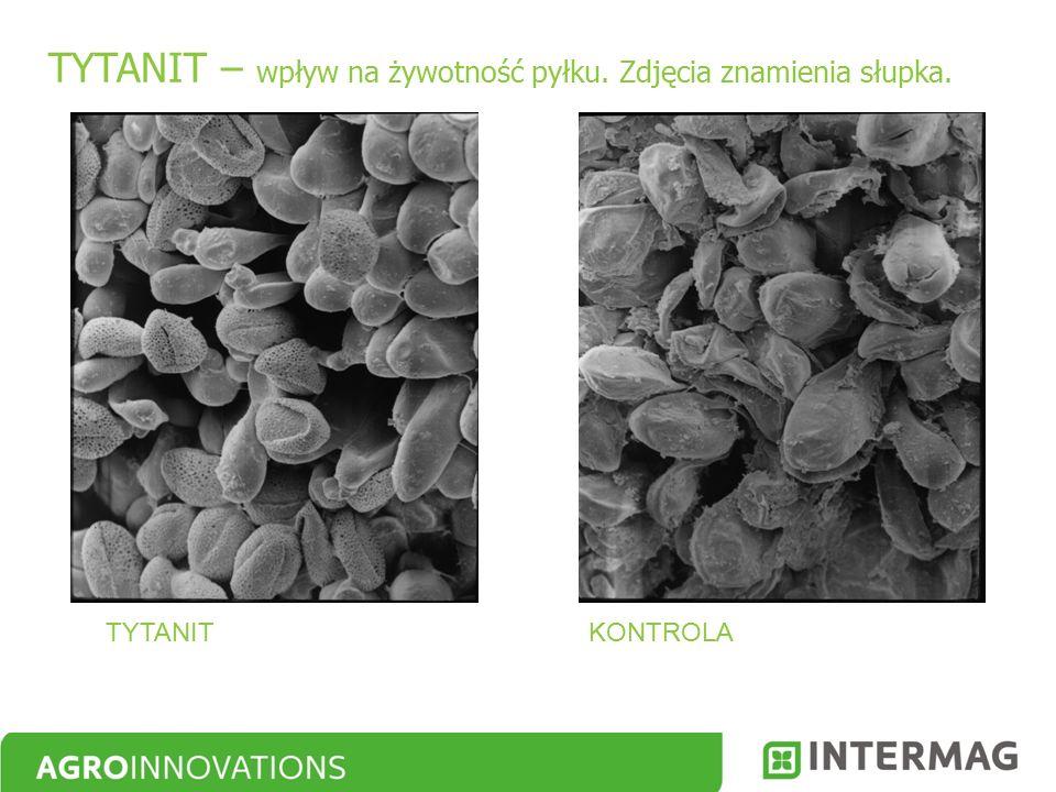 TYTANIT – wpływ na żywotność pyłku. Zdjęcia znamienia słupka. TYTANITKONTROLA