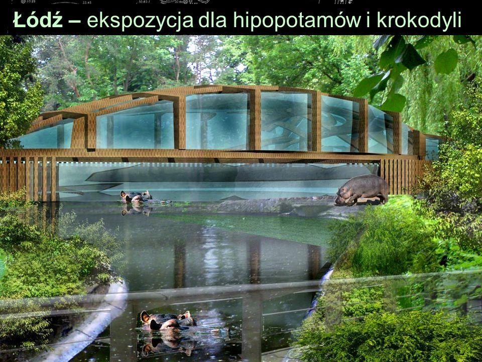 Łódź – ekspozycja dla hipopotamów i krokodyli
