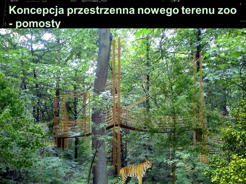 Koncepcja przestrzenna nowego terenu zoo - pomosty