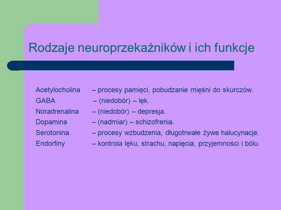Rodzaje neuroprzekaźników i ich funkcje Acetylocholina – procesy pamięci, pobudzanie mięśni do skurczów.