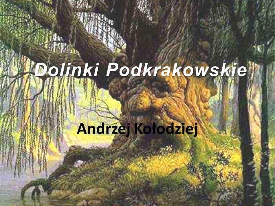 Dolinki Podkrakowskie Andrzej Kołodziej