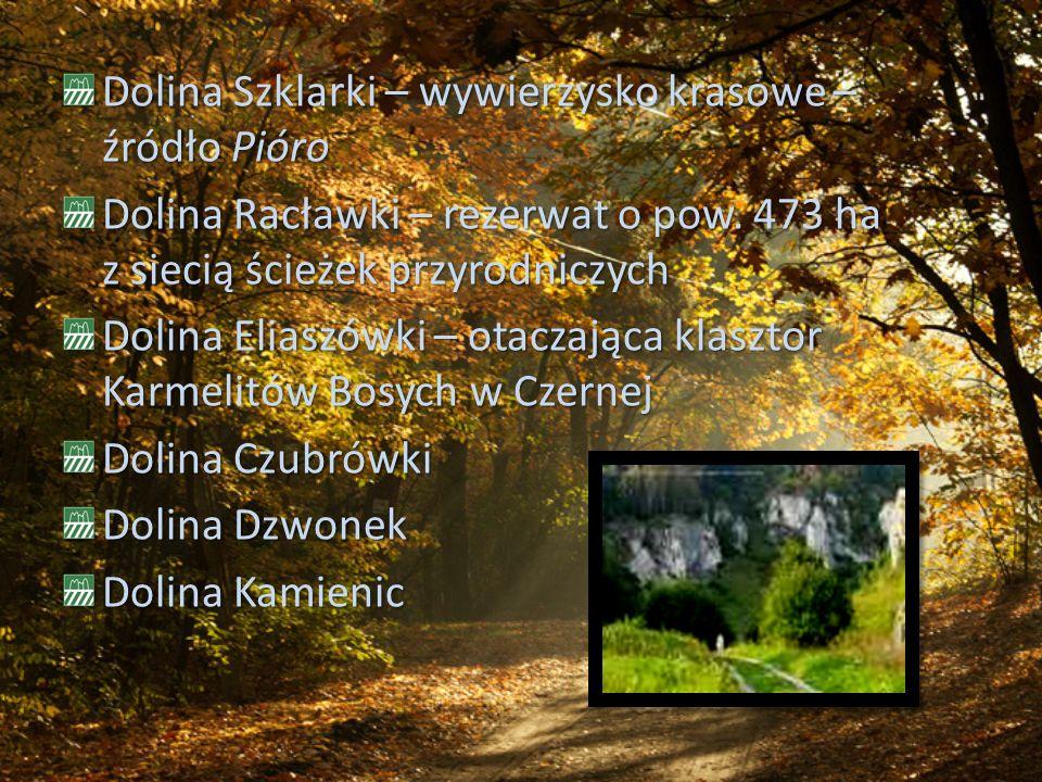 Dolina Szklarki – wywierzysko krasowe – źródło Pióro Dolina Racławki – rezerwat o pow. 473 ha z siecią ścieżek przyrodniczych Dolina Eliaszówki – otac