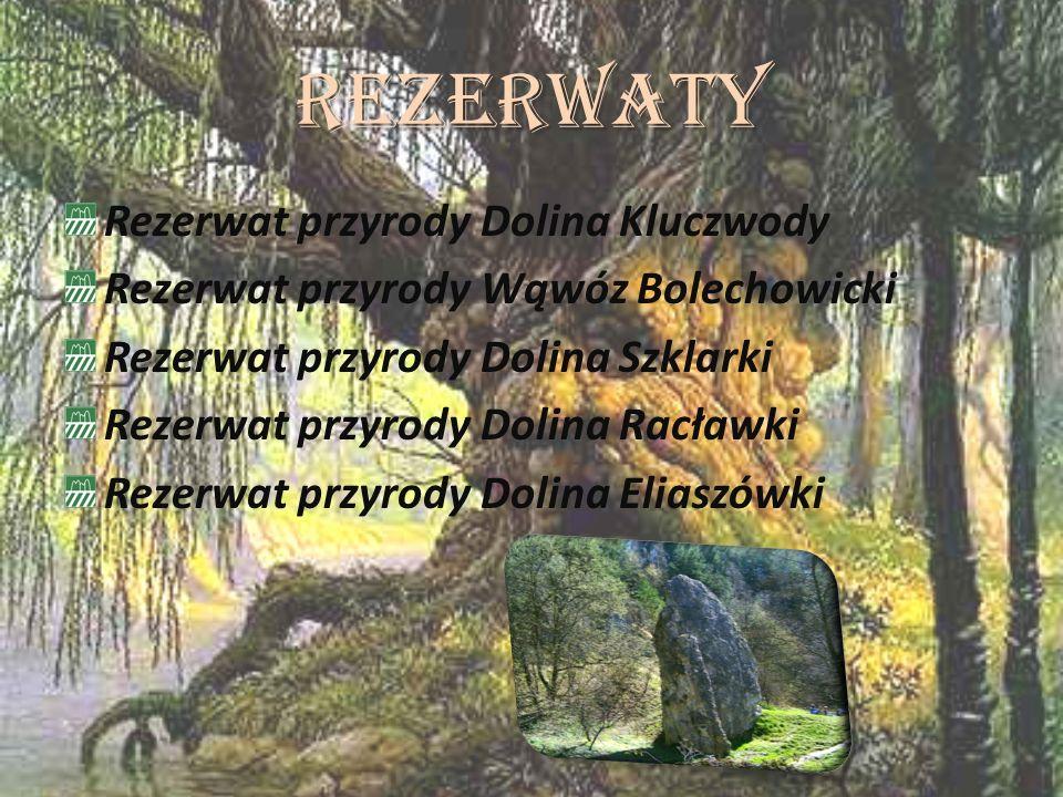 Rezerwaty Rezerwat przyrody Dolina Kluczwody Rezerwat przyrody Wąwóz Bolechowicki Rezerwat przyrody Dolina Szklarki Rezerwat przyrody Dolina Racławki