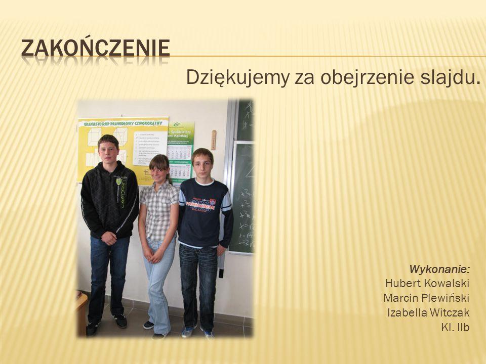 Dziękujemy za obejrzenie slajdu. Wykonanie: Hubert Kowalski Marcin Plewiński Izabella Witczak Kl.