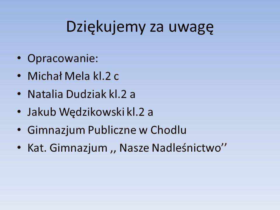 Dziękujemy za uwagę Opracowanie: Michał Mela kl.2 c Natalia Dudziak kl.2 a Jakub Wędzikowski kl.2 a Gimnazjum Publiczne w Chodlu Kat.