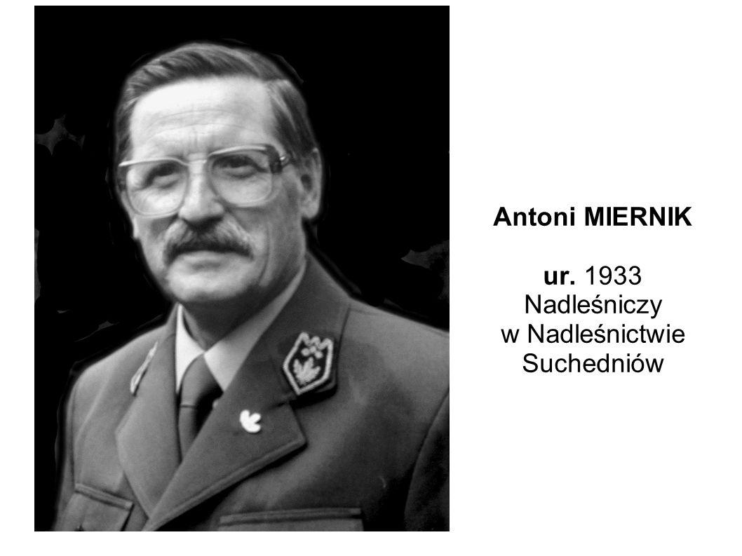 Antoni MIERNIK ur. 1933 Nadleśniczy w Nadleśnictwie Suchedniów
