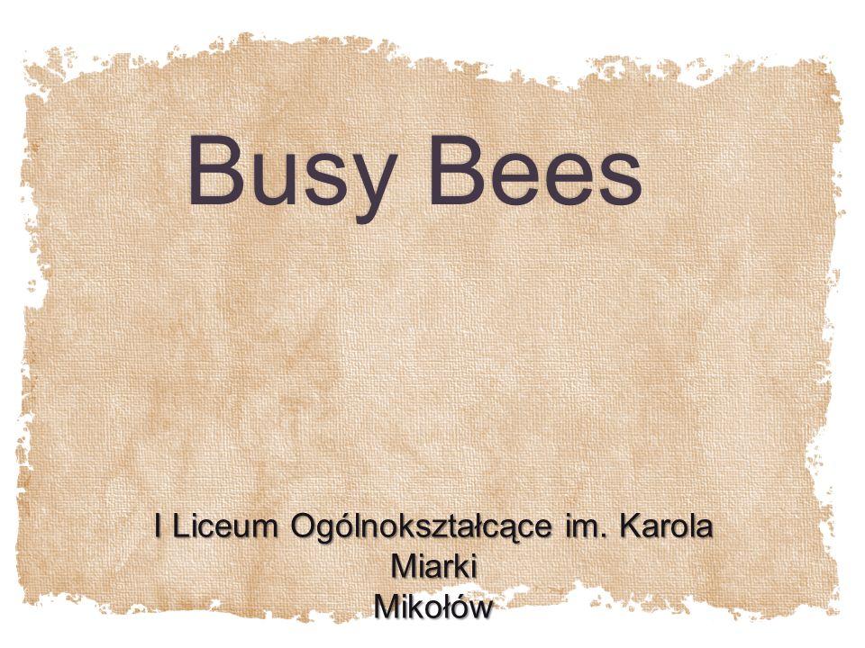 Busy Bees I Liceum Ogólnokształcące im. Karola Miarki Mikołów