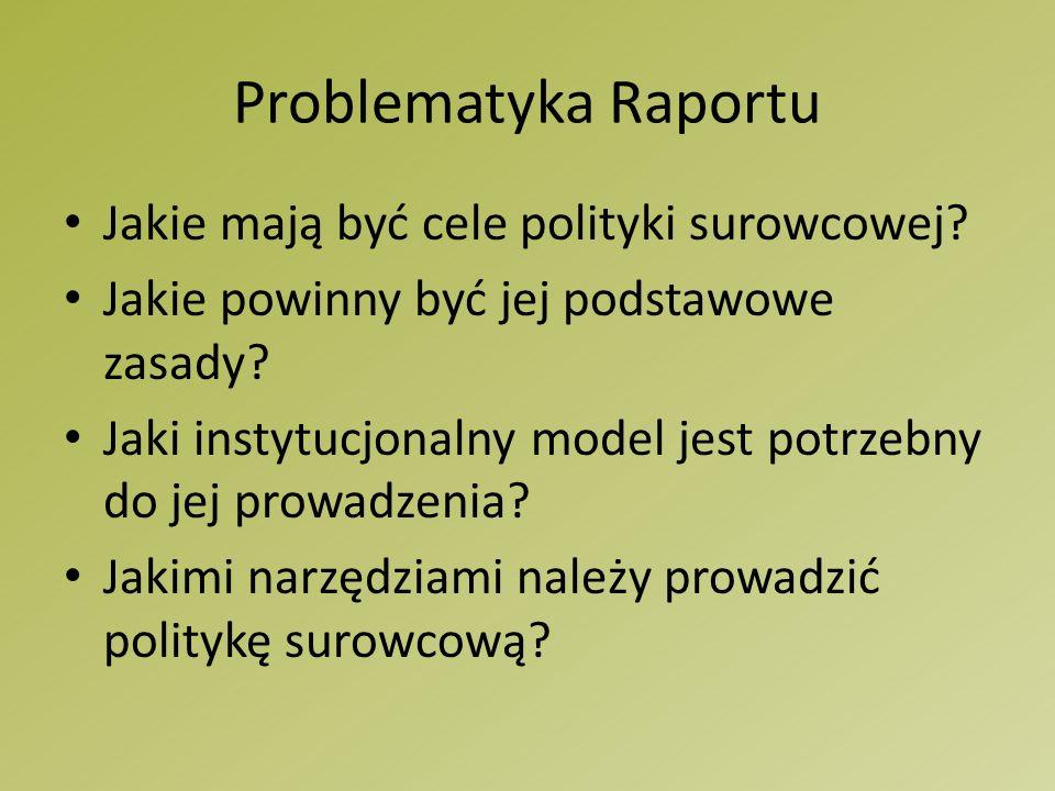 Problematyka Raportu Jakie mają być cele polityki surowcowej.