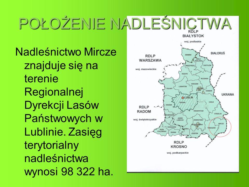 POŁOŻENIE NADLEŚNICTWA Nadleśnictwo Mircze znajduje się na terenie Regionalnej Dyrekcji Lasów Państwowych w Lublinie.