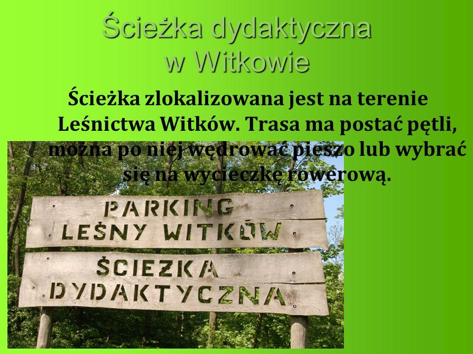 Ścieżka dydaktyczna w Witkowie Ścieżka zlokalizowana jest na terenie Leśnictwa Witków.