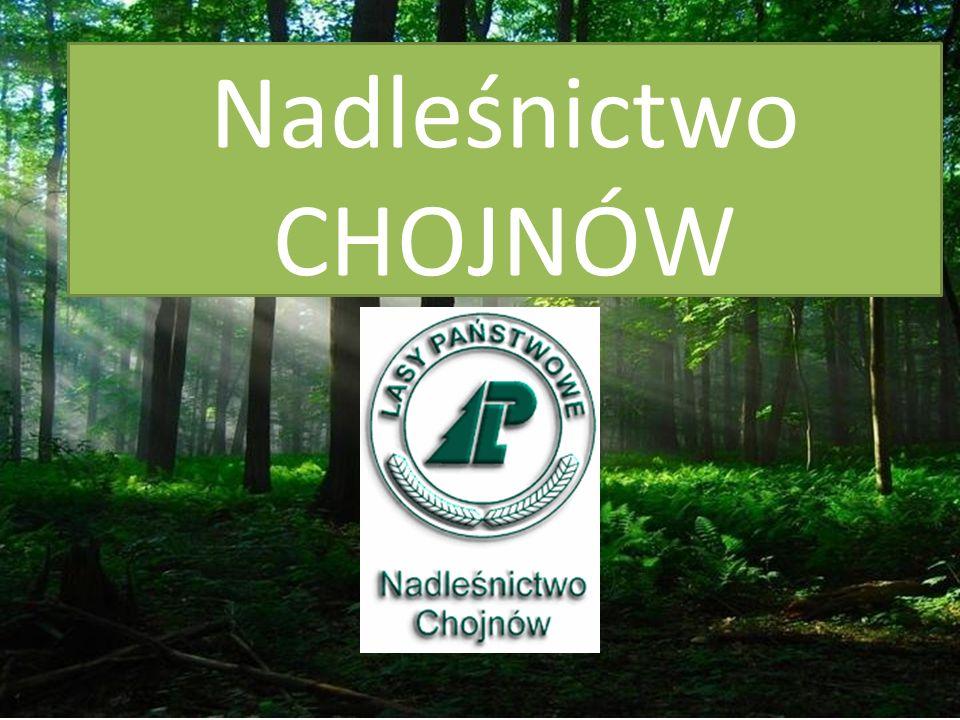 Położenie Nadleśnictwa Nadleśnictwo Chojnów leży w województwie mazowieckim.