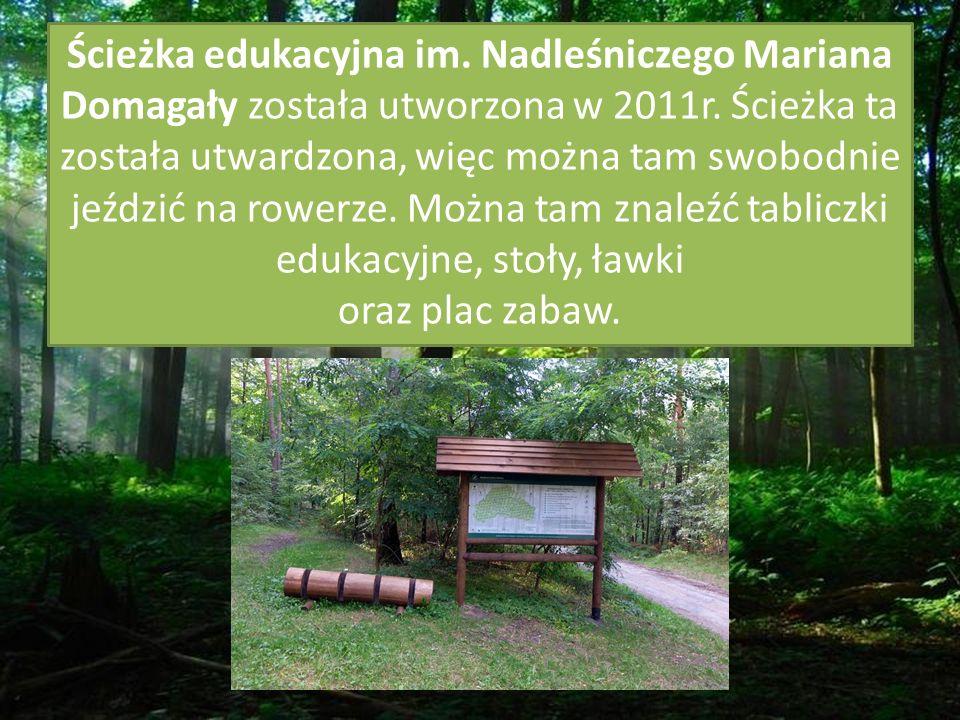 Ścieżka edukacyjna im. Nadleśniczego Mariana Domagały została utworzona w 2011r.