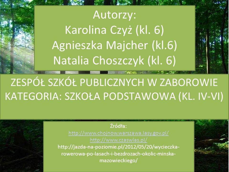 ZESPÓŁ SZKÓŁ PUBLICZNYCH W ZABOROWIE KATEGORIA: SZKOŁA PODSTAWOWA (KL.