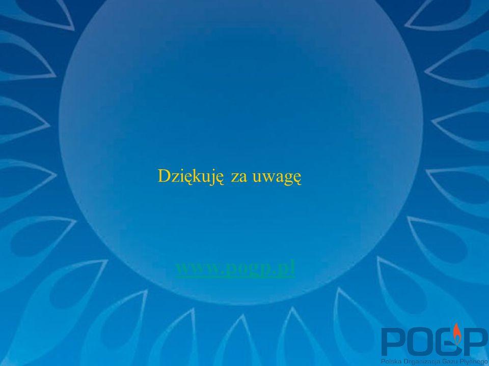 Dziękuję za uwagę www.pogp.pl