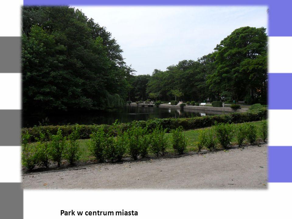Park w centrum miasta