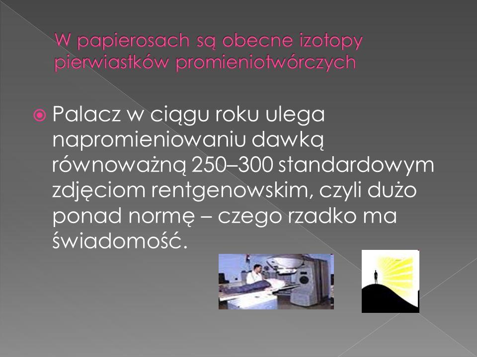  Palacz w ciągu roku ulega napromieniowaniu dawką równoważną 250–300 standardowym zdjęciom rentgenowskim, czyli dużo ponad normę – czego rzadko ma świadomość.
