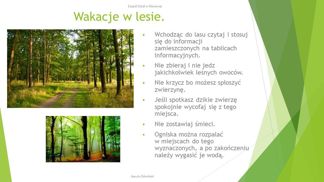 Wakacje w lesie.  Wchodząc do lasu czytaj i stosuj się do informacji zamieszczonych na tablicach informacyjnych.  Nie zbieraj i nie jedz jakichkolwi