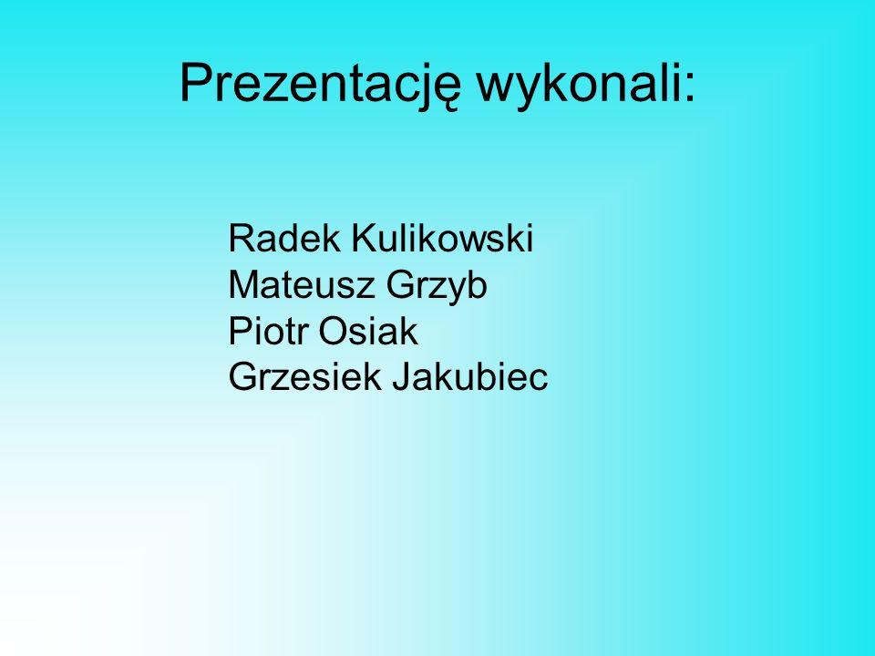 Prezentację wykonali: Radek Kulikowski Mateusz Grzyb Piotr Osiak Grzesiek Jakubiec